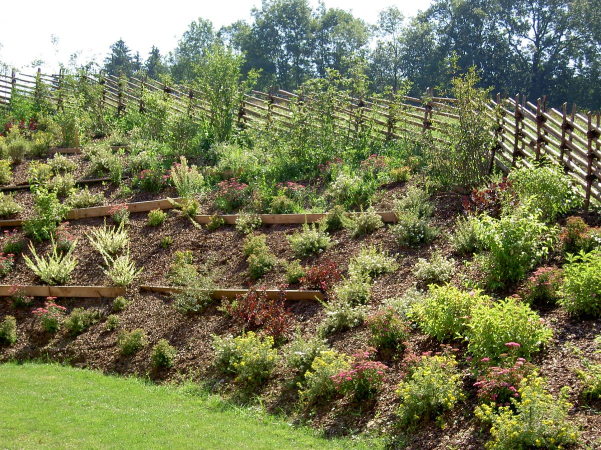 Biologische Gartengestaltung