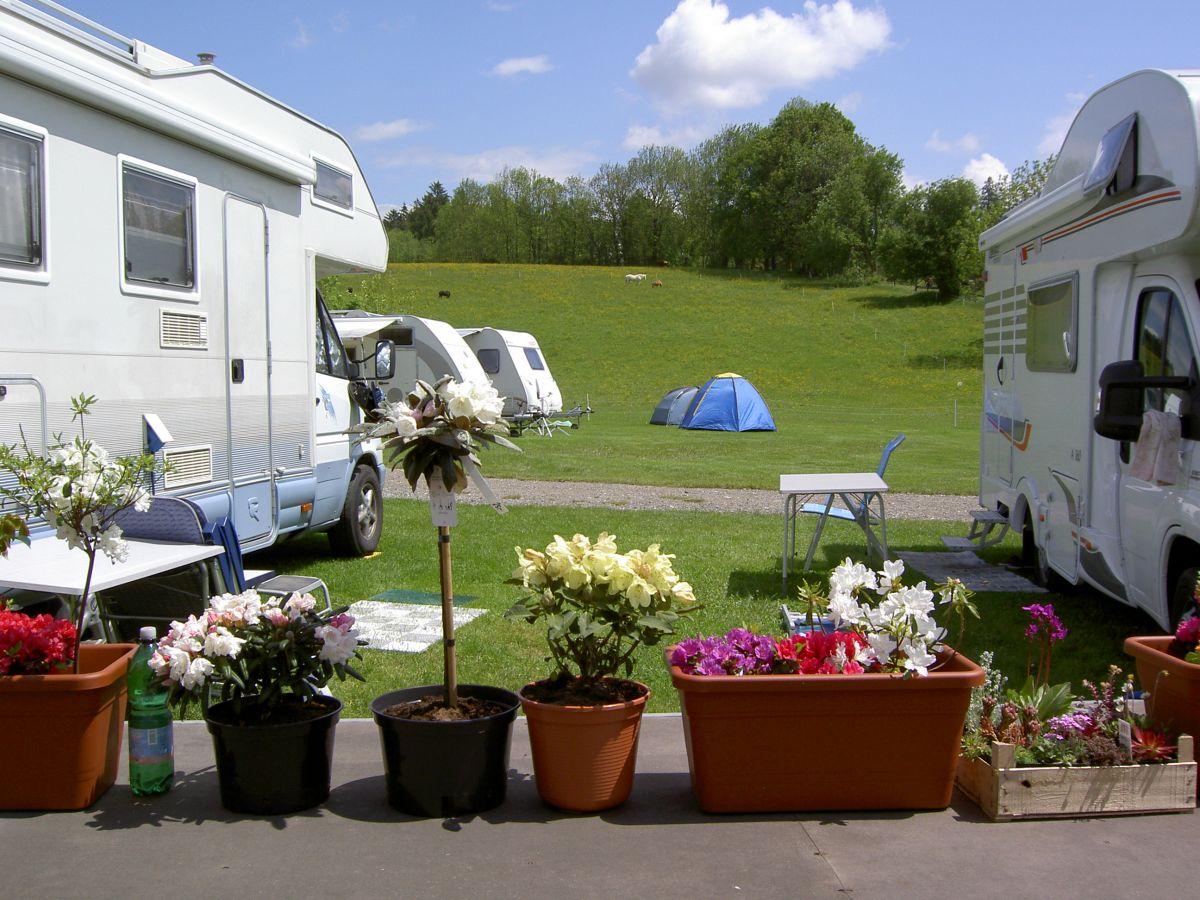 Fruchtbarer Boden am Campingplatz