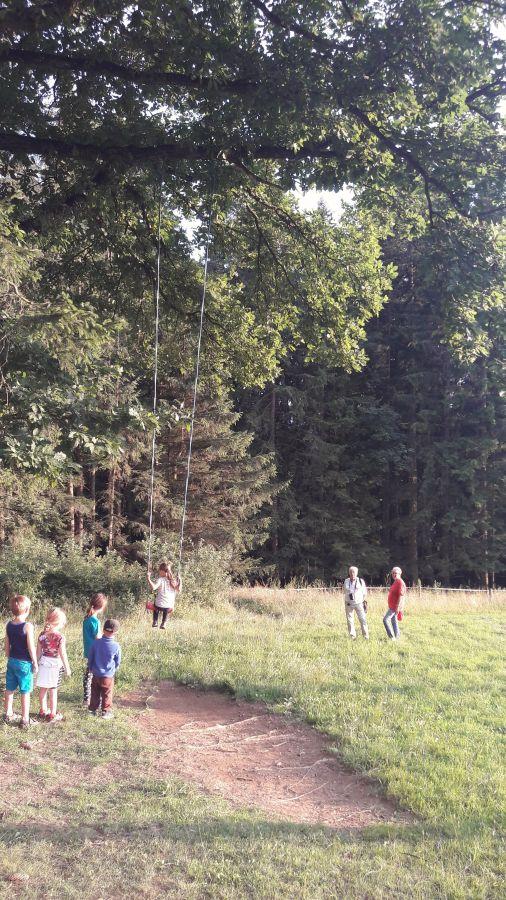Heidischaukel an der Wild-Wiesenrunde