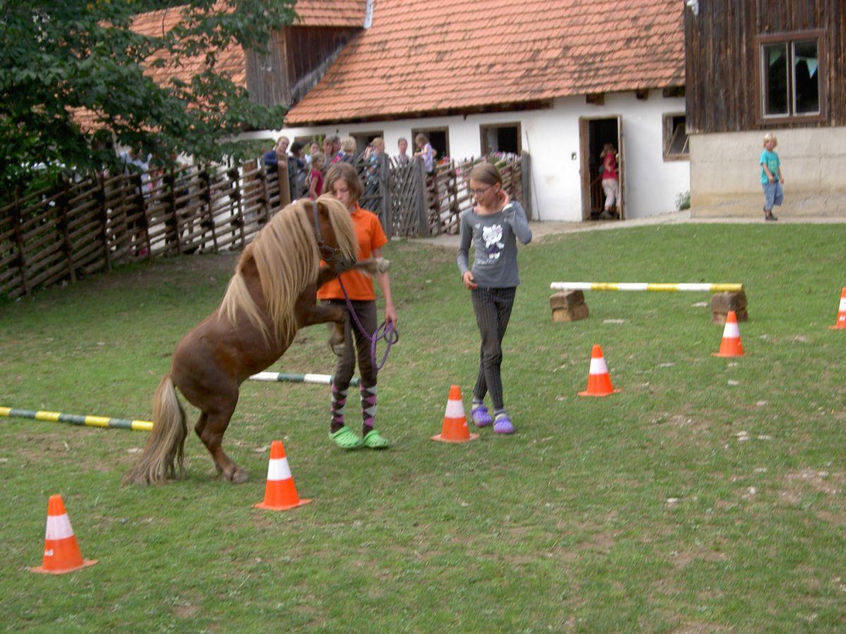 Ponyparcour mit den Gästekindern