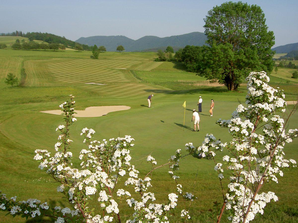 Almenland Golf 3